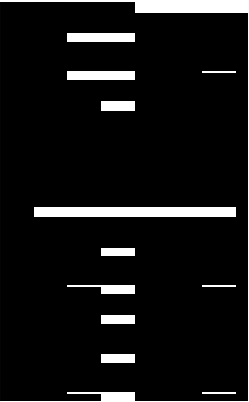 福岡市子連6月各区 予定表